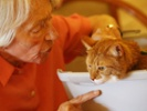 Cat Brings Therapy And Delight To The Elderly