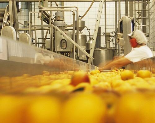 Fruit supply chain