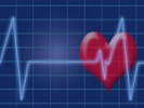 Study: Healthy but obese adults have higher cardiovascular risks