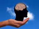 Brain, hand, head
