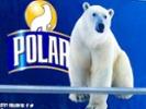 Polar Beverages debuts Seltzer'ade line