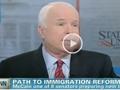 john mccain, immigration
