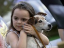 22 comparative oncology trials target cancer in dogs and humans.