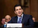 "Gottlieb promises ""bottom up"" approach at FDA"