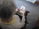 Enzyme depletion shows promise for reversing Alzheimer's disease in mice