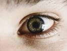 Scientist restore vision in live rat model of retinitis pigmentosa
