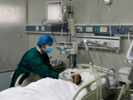 China records spike in bird flu deaths