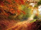 Pinterest: Users organize their lives before fall
