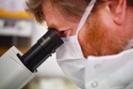 EPA to launch wastewater testing pilot for coronavirus
