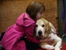 Growing number of clinical trial participants have four legs and a tail