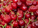 Cherry growers see smaller crops but sizeable returns