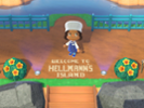 "Hellmann's sponsors ""Animal Crossing"" video game"