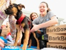 Promoting BarkBox out of a passion for pups