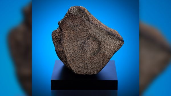 World's largest Martian meteorite goes on display
