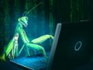 Malware campaign hunts for US targets via web apps