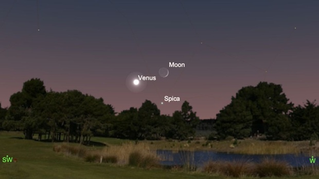 See the moon form a triangle with Venus and Spica tonight