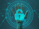 Building a company's cybersecurity skills on a budget