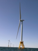 AWEA: R.I. offshore wind farm acts as artificial reef
