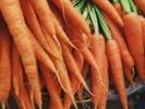 Study links snack program, lower fat, sugar intake