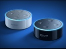 Sirius XM, Amazon team in speaker cross-promotion