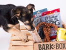 BarkBox markets by connecting with consumers