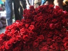Demand drives up flower prices for Valentine's Day