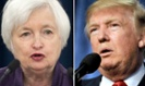Yellen reportedly to meet with Trump