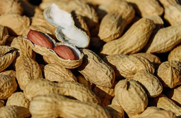 A proposed treatment for treating peanuts allergies didn't cost peanuts