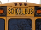 How are districts managing shortage of bus drivers?