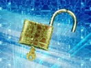 Survey: Higher ed unprepared for cyberrisks