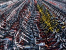 Mergers could save China's remaining bike-share firms