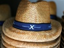 Personalized emails by Celebrity Cruises boost revenue