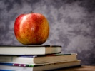 4 National Teacher of the Year finalists announced