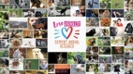 Enter FBR's 'Love Animals? Support Animal Research' photo contest