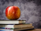 Survey: Teachers mostly white, female in US