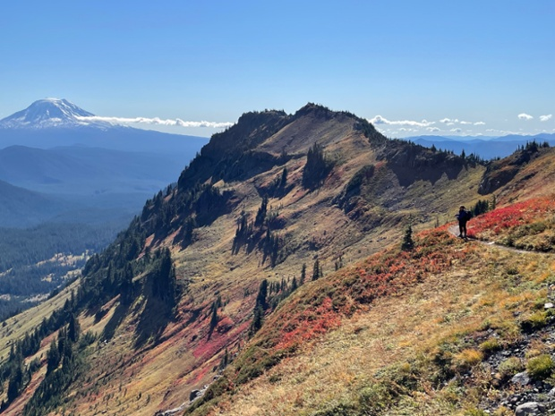 View of Mt. Adams from Goat Ridge trail in Gifford Pinchot Forest