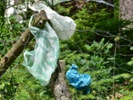 Chemical, CPG firms launch $1B Alliance to End Plastic Waste