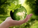 How digital advertisers can become more eco-friendly