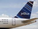 JetBlue, N.Y. Botanical Garden join on Caribbean conservation