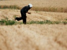 Draft law would boost China's efforts to clean up soil