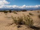 76-year-old runner tackles Death Valley ultramarathon