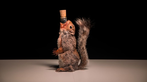 These boozy drinks weren't skunky, but one was squirrely