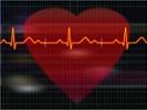 Ultrasound patch monitors cardiovascular health